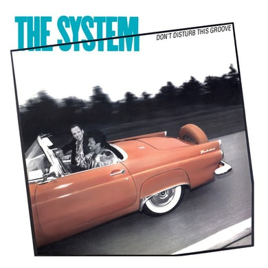 The System   The System - Don't Disturb This Groove