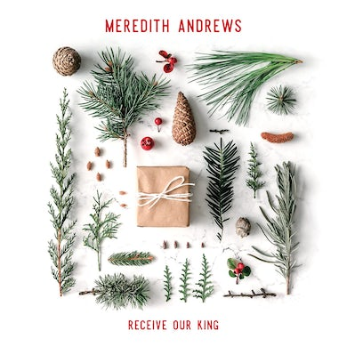 Meredith Andrews Receiving Our King