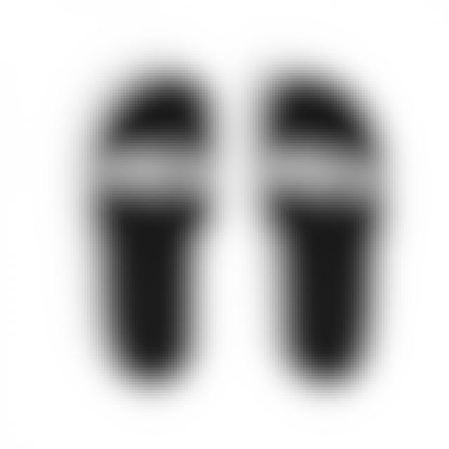 Papa Roach Logo Slides (Black)
