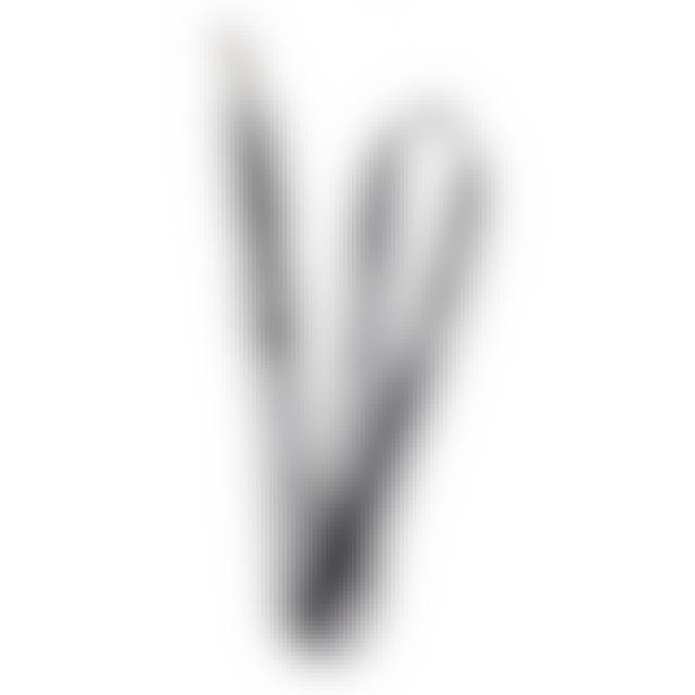 Papa Roach Logo Lanyard