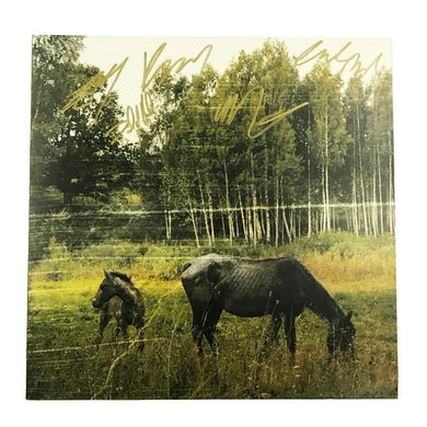 Pianos Become The Teeth Old Pride LP (Blue Marble) - Signed (Vinyl)