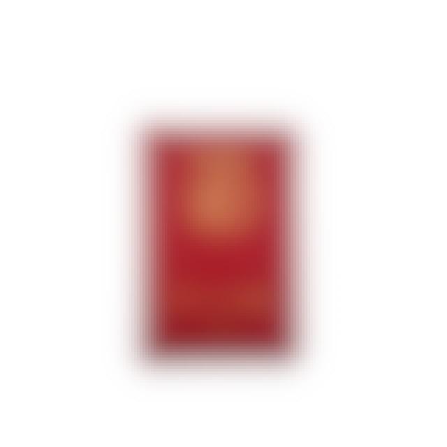 Client Liason Diplomatic Immunity Passport Wallet