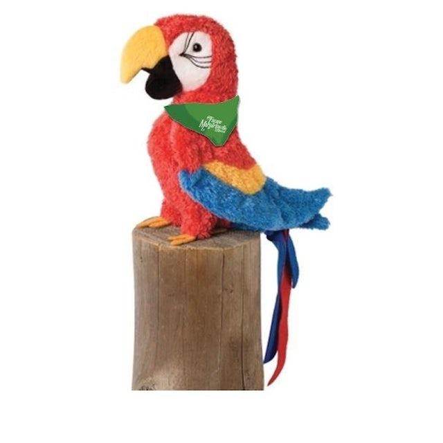 Escape to Margaritaville Parrot