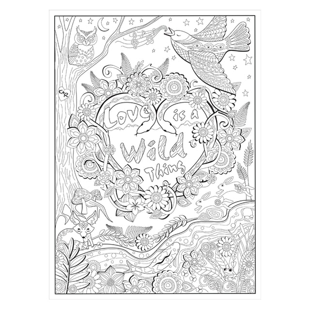 Kacey Musgraves OH, WHAT A COLORFUL WORLD COLORING BOOK