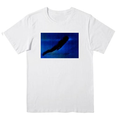 Jordan Rakei ORIGIN Album White T-shirt