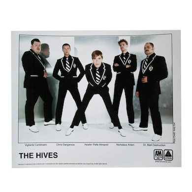 THE HIVES 8X10 PHOTO