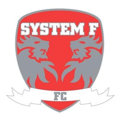 Ferry Corsten System F - Badge