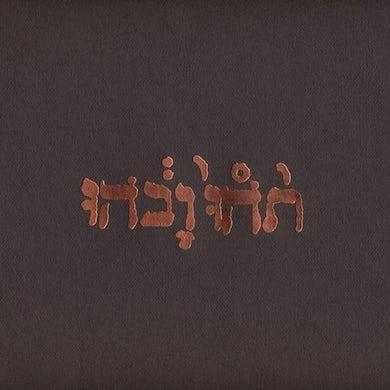 Godspeed You! Black Emperor 'Slow Riot For New Zero Kanada E.P.' Vinyl Record