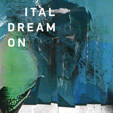 'Dream On' Vinyl Record