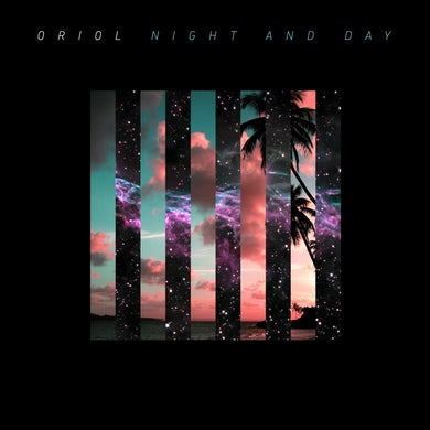 'Night And Day' Vinyl Record