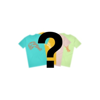 Ra Ra Riot  DIVER TEE MYSTERY COLOR