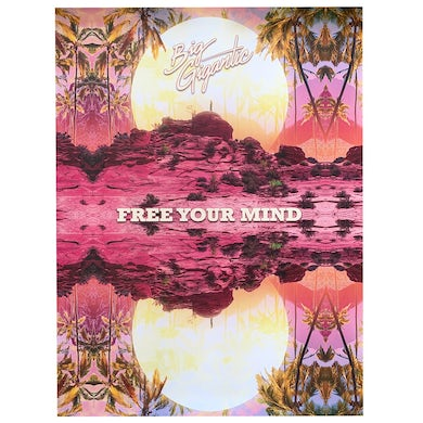 Big Gigantic Free Your Mind Poster