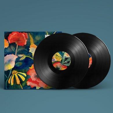 AdriAnne Lenker songs and instrumentals 2LP (Vinyl)