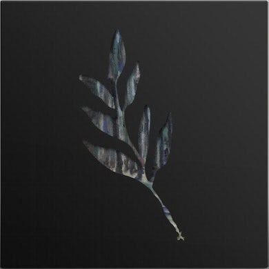 The Album Leaf | An Orchestrated Rise To Fall - LP (Vinyl)