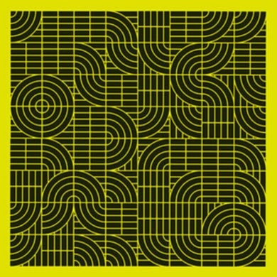 LP - Pubic Intellectual: An Anthology 1986-2016 (Vinyl)