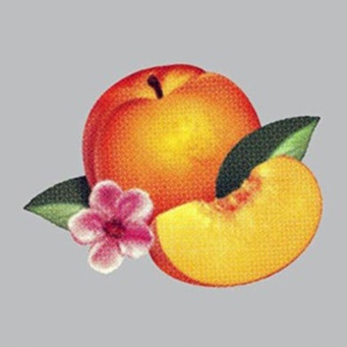 Phoenix LP - Bankrupt (Vinyl)