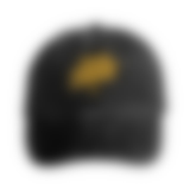 State Champs SC - Globe Logo Dad Hat