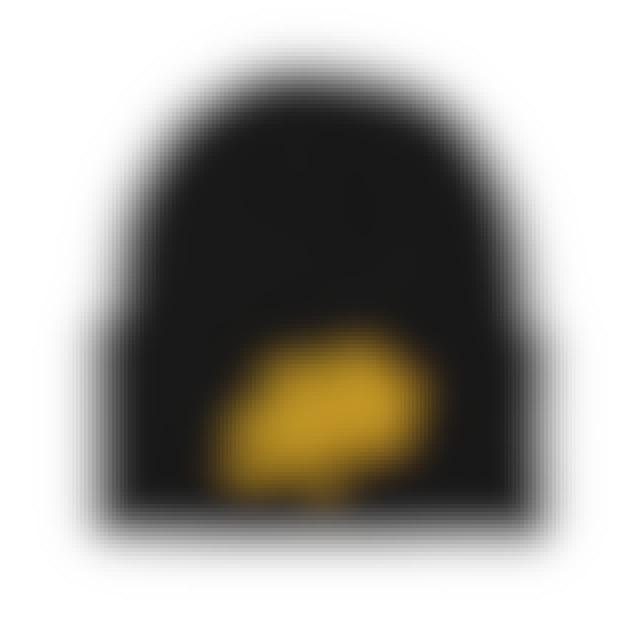 State Champs SC - Around The World Logo Beanie (Blk/Gld)