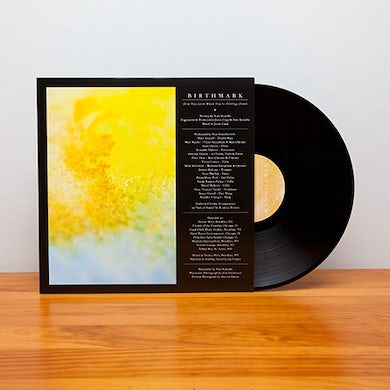 Birthmark How You Look When You're Falling Down (Vinyl)