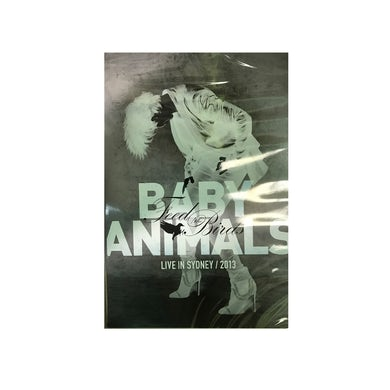 Baby Animals Feed The Birds DVD