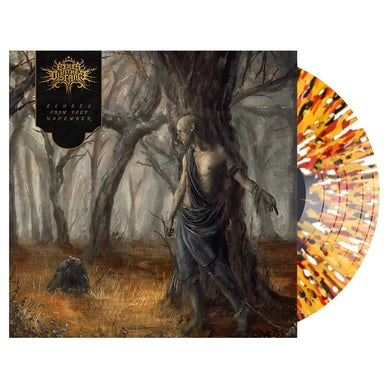 FIRES IN THE DISTANCE - 'Echoes From Deep November' LP (Vinyl)