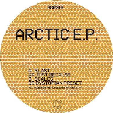 Secret Static Arctic ep Vinyl Record
