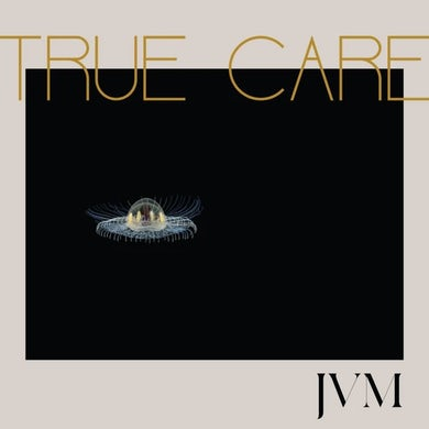 True Care (2 LP) Vinyl Record