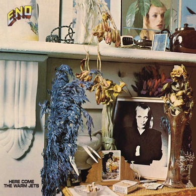 Brian Eno Here Come The Warm Jets Vinyl Record