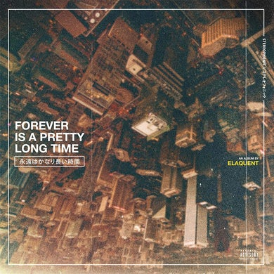 Forever Is A Pretty Long Time Vinyl Record