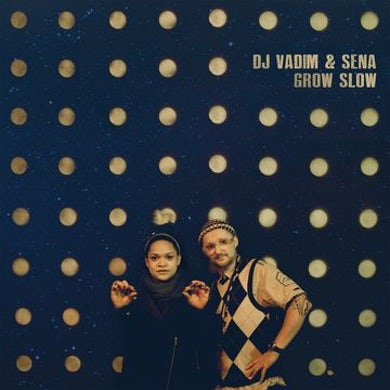 Dj Vadim Grow Slow Vinyl Record