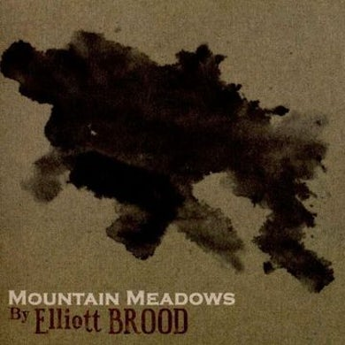 Elliott Brood Mountain Meadows Vinyl Record