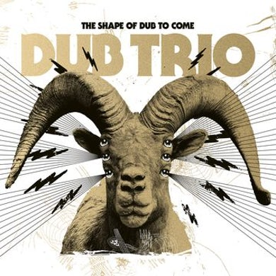 Shape Of Dub To Come Vinyl Record