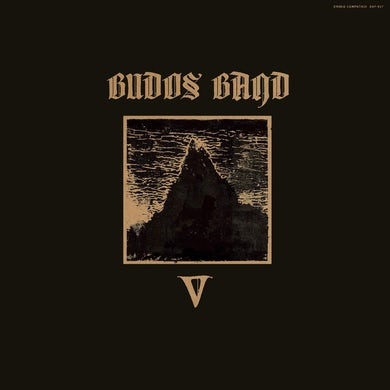 V Vinyl Record