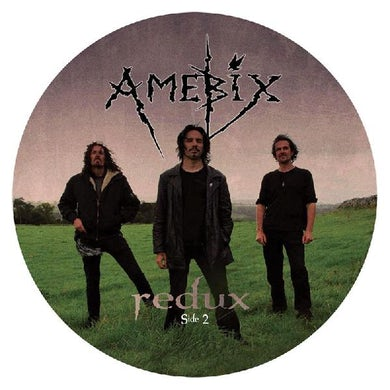 Redux (Picture Disc) Vinyl Record