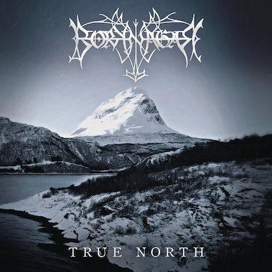 True North Vinyl Record