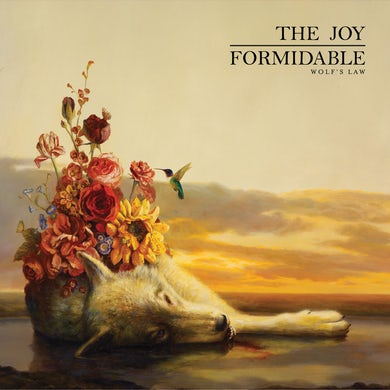 The Joy Formidable Wolfs Law Vinyl Record