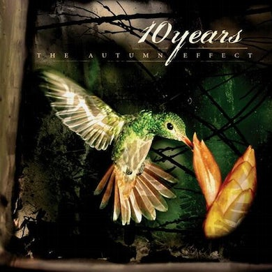 10 Years The Autumn Effect CD