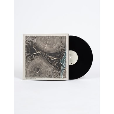 NEEDTOBREATHE Rivers In the Wasteland - Black Vinyl