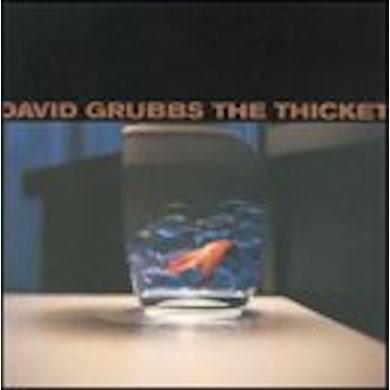 David Grubbs THICKET CD