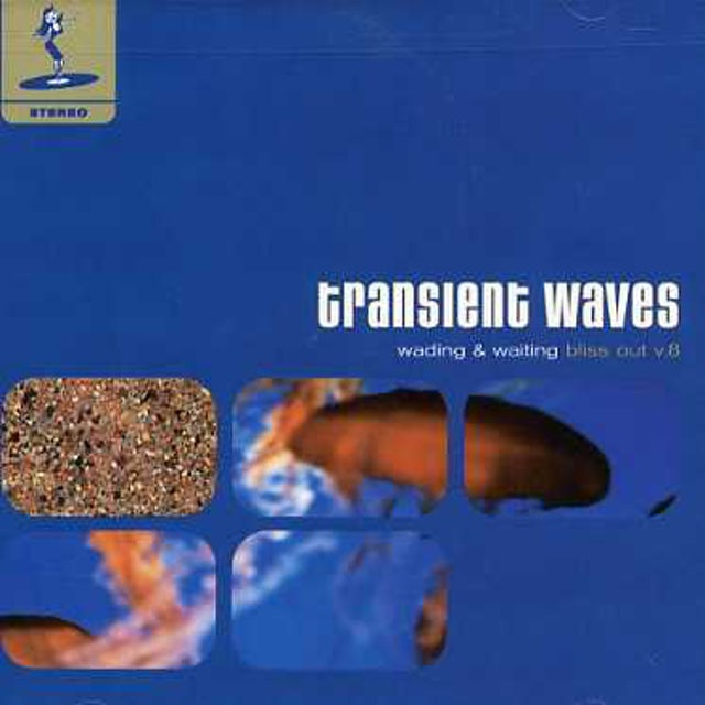 Transient Waves WADING & WAITING: BLISS OUT 8 CD