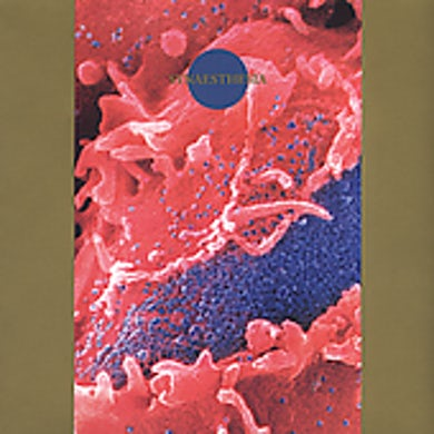Death Ambient SYNAESTHESIA CD