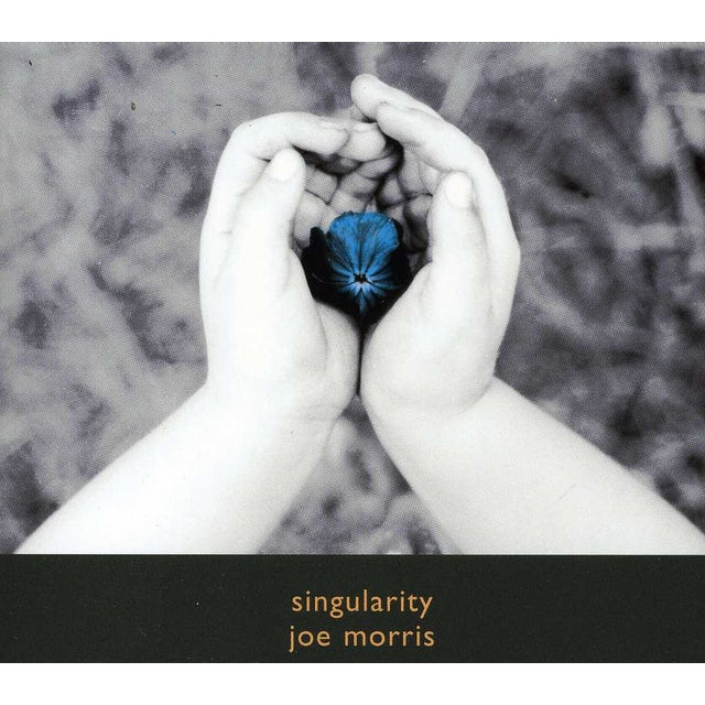 Joe Morris SINGULARITY CD