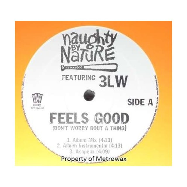 Naughty By Nature / 3Lw FEELS GOOD Vinyl Record
