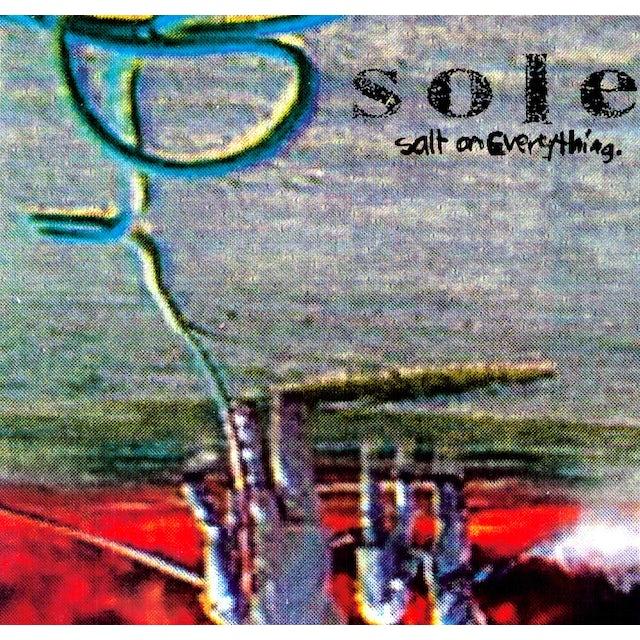 Sole SALT ON EVERYTHING Vinyl Record