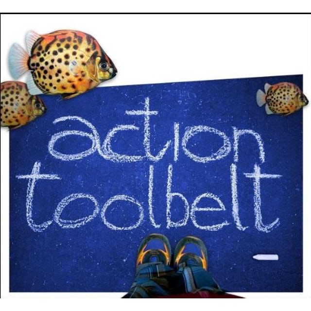 Action Toolbelt CD