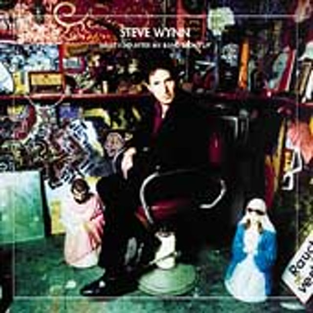 Steve Wynn WHAT I DID AFTER MY BAND BROKE UP: BEST OF STEVE CD