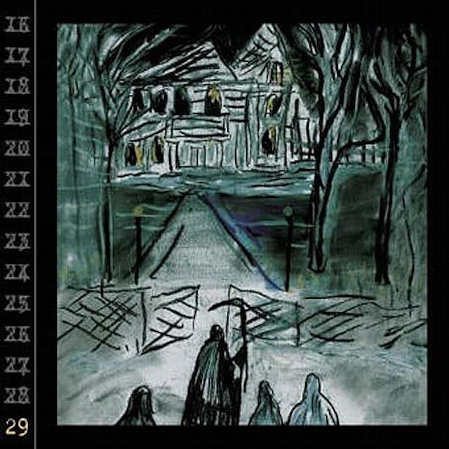 Ryan Adams 29 Vinyl Record