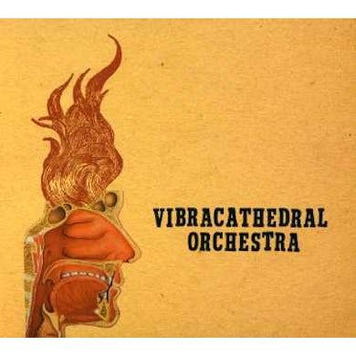 Vibracathedral Orchestra WISDOM THUNDERBOLT CD