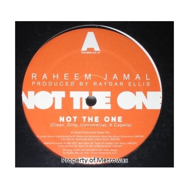 Raheem Jamal NOT THE ONE Vinyl Record