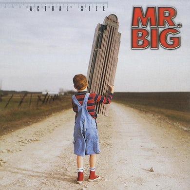 Mr Big ACTUAL SIZE CD